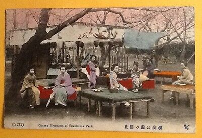 "Japan ~ Antique Postcard ""geishas ~ Cherry Blossoms Of Yokohama Park"""