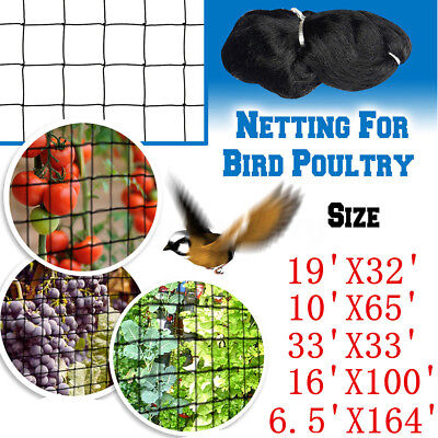 30M/50M Anti Bird Protection Net Fruit Vegetables Flower Garden Pond Netting