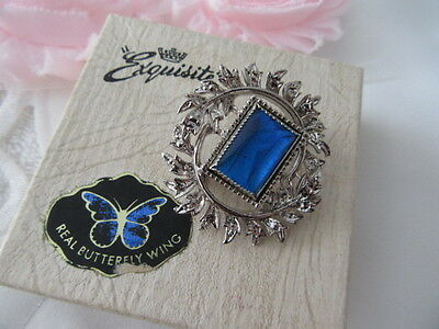 Stunning Vintage  Boxed Real Buttefly Wing Exquisite  Brooch