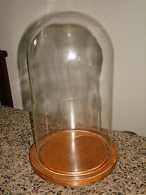 "VTG GLASS DOME DISPLAY CASE WOOD BASE 12"" x 6 1/2'' DOLL CLOCK TAXIDERMY"