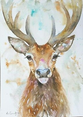 Anna Swift A3 Original Watercolour Painting 'stag' British Wildlife