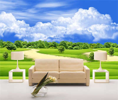Countryside Road Field Full Wall Mural Photo Wallpaper Print 3D Decor Kid Home