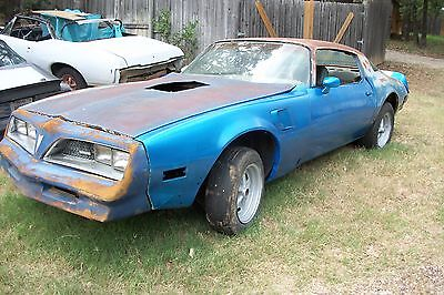 1978 Pontiac Trans Am trans am 1978 pontiac trans am martinigue blue project