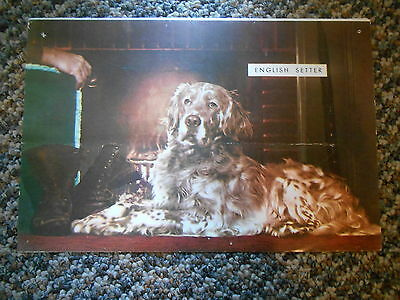 Old Vintage Paper Picture English Setter Fireplace Man's Boots & Care Fur Coats