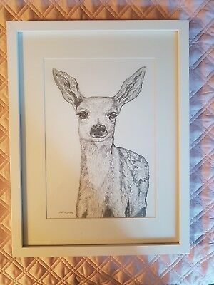 Original Artwork Deer pencil drawingA4 including Frame