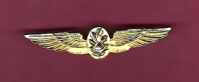 US Navy and Marine Corps USMC Flight Surgeon Wings Badge