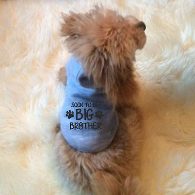 Soon to be big brother dog hoodie small pet annoucement sweater top UK SELLER