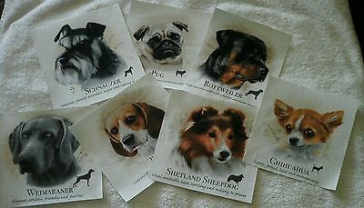 Dogs~Popular Dog Faces (1)~Iron On Fabric Applique~No Sewing Req~Asst Designs~