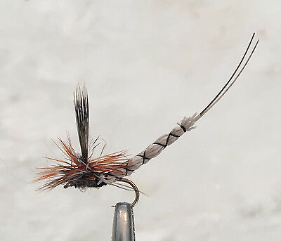 Adams Superfly - Dry Fly - Trout Fishing Flies - 6 Flies X Size 14
