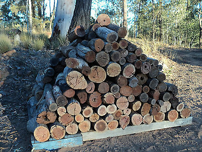Firewood; Mixed Seasoned Hardwood Branch Wood Pieces Cut To 1 Ft  Lengths. (1m3)