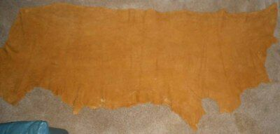 Very Large Moose Hide Tanned From Alaska