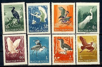 Hungary 1959 Birds ERROR MNH |S1210