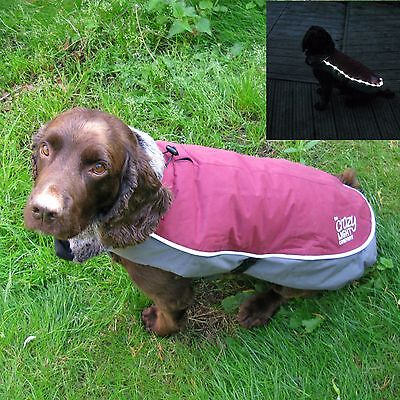 Rosewood Night-Bright Luxury  All Weather ' Waterproof ' LED Dog Jacket Coat