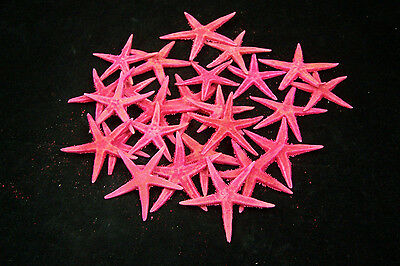 100 Dyed Pink Flat Tan Starfish 2 to 2 1/2 inches
