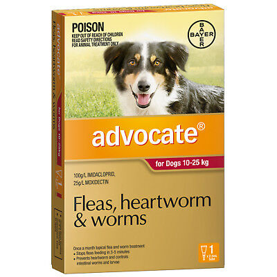 Advocate for Large Dogs Red 10-25kg 1 PACK * GENUINE 1PK *  Single Dose