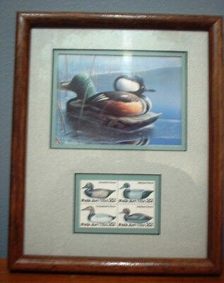 Ducks Unlimited Picture, 1990 Minnesota Duck Stamp Print
