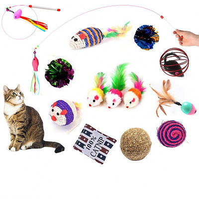 BESTIM INCUK Cat Toys Variety Pack 14 Pieces Interactive Kitten Toys with Cat Te