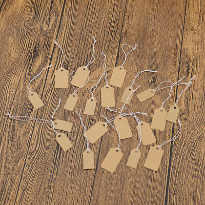 100pcs Blank Kraft Paper Hangtags Jewellery Craft Pricing String Label Tags DIY