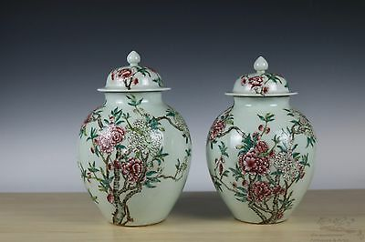 Beautiful Chinese Famille Rose Pair Porcelain Flowers Pot with Cover