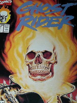 Ghost Rider #18 (Oct 1991, Marvel) Issues 16 17 18 19 20 21 22 23 24 25 26 27 28