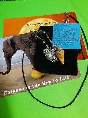 Crazy Lace Agate Pendulum Gemstone Owl Necklace + Teach Yourself Booklet+Extras