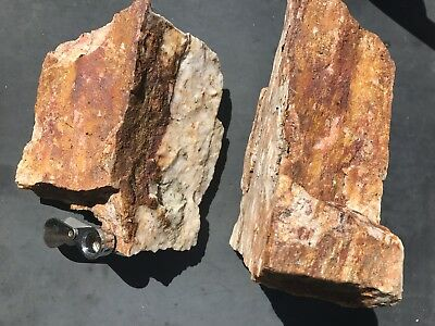 10 LB Specimen Cochise County Lost Mine Quartz Vein Material With Visible Gold!
