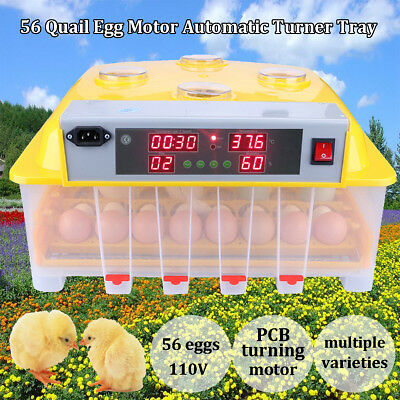 Digital Automatic 56 Egg Incubator Hatching Machine Temperature Control 110V