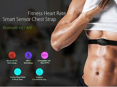 Bluetooth Heart Rate Monitor Strap For Riding Walking Race Rope Skipping UK
