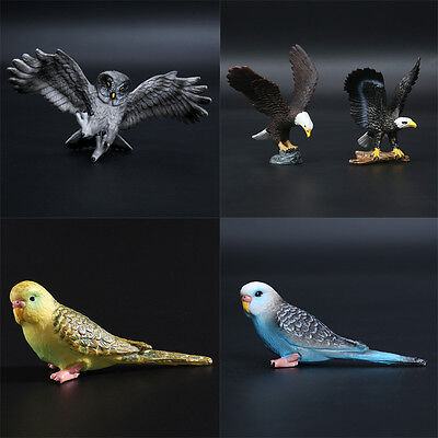 Simulated Birds Model Home Ornament Collect Education Figure Toy Family Gift