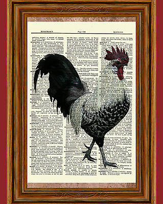 Rooster Dictionary Art Print Book Page Picture Poster Vintage Kitchen Wall Decor