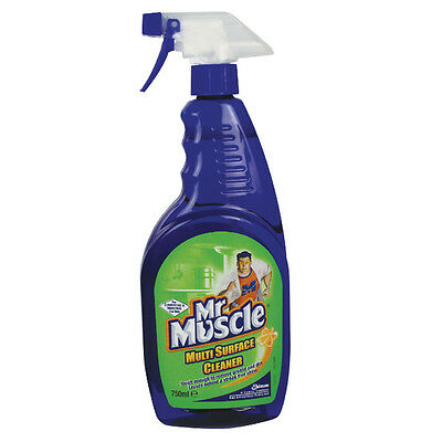 Mr Muscle Multi-Surface Cleaner 750ml 7516582
