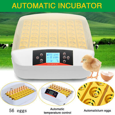 Digital 56 Eggs Automatic Incubator Turner Poultry Chicken Temperature Control