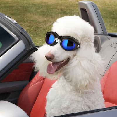 Pet Leso® Doggles Large Dog Driving Cycling Sunglasses UV Protection Waterproof