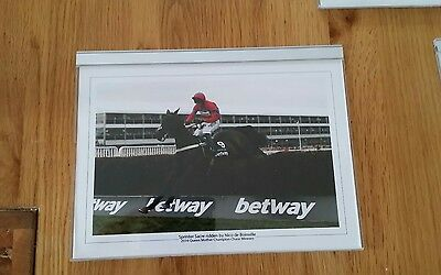 Sprinter Sacre Horse racing photographs