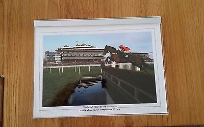 Thistlecrack Horse racing photographs