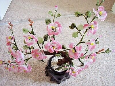 Chinese bonsai glass Large flower tree, with  big flowers,pink