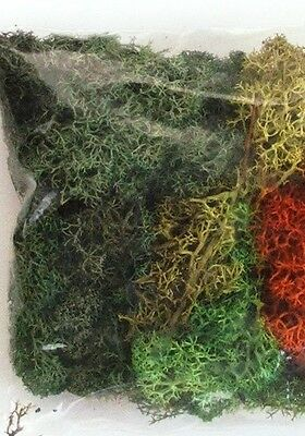 LICHEN FOLIAGE Bushes Hedges MIXED COLOURS 30g Trains Lychen HO 1/87 scale L168