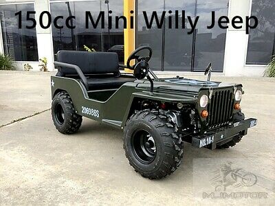 150cc Mini Willy Jeep Replica 2WD Semi Auto Golf Cart Twin Seat Kids Adults