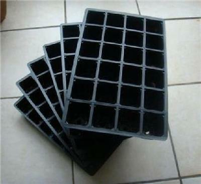 6 Pack 24 Cells Cavity Seedling Starter Tray Seed Germination Nursery Pots Plant