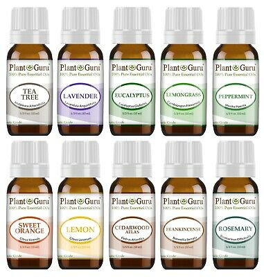 Essential Oil Set 10 - 10 ml. Sampler Kit 100% Pure Therapeutic Grade Oils Lot