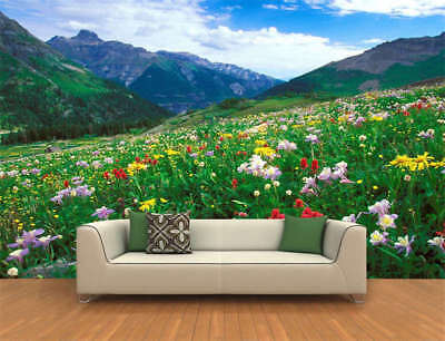 Colorado Spring Field Full Wall Mural Photo Wallpaper Printing 3D Decor Kid Home