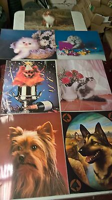 """bankrupt stock job lot of laminated posters dogs and cats [162]size 20""""x 16"""""""