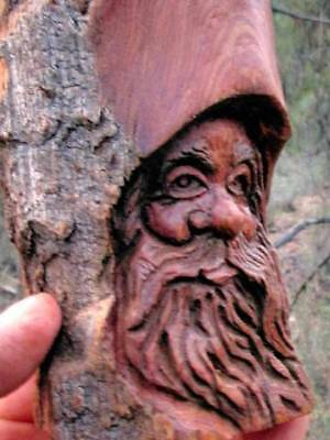 Wood Spirit Tree Gnome Forest Face Carving Hobbit Head Wizard Elf Sculpture