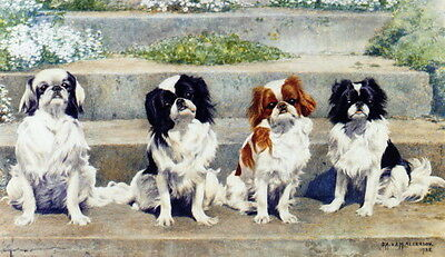 1938~Four Japanese Chin Dog Dogs Sitting on Step ~ NEW Large Note Cards