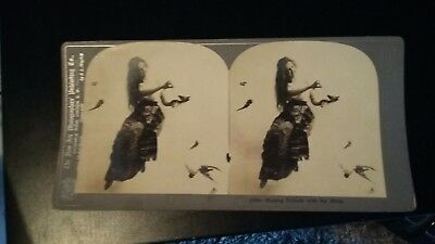 Stereograph Karten/ Fotos- Making friends with the birds