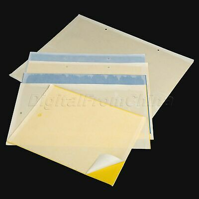 Garden Strong Flies Traps Bed Sticky Glue Board Insects Killer Catchers 10PCS