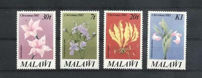 (942579) Flowers, Orchids, Malawi