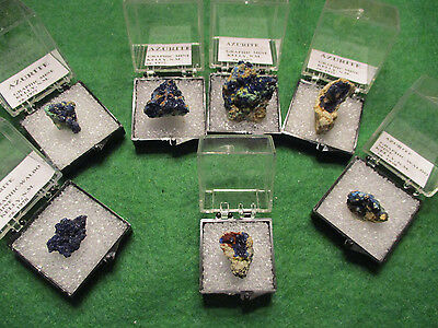 Lot #2 AZURITE crystal specimens from GRAPHIC-WALDO MINE, KELLY, NEW MEXICO, USA