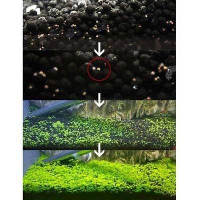 Aquarium Fish Tank Easy Plant Grass Seeds Water Background Decor Home Garden Hot