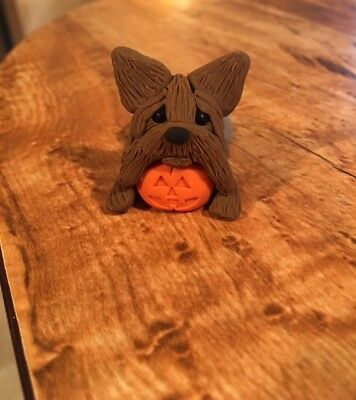 Adorable Yorkie With Pumpkin Figurine - OOAK - Polymer Clay